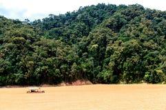 Tropikalny las deszczowy łódź zdjęcie royalty free