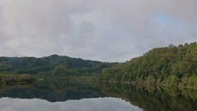 Tropikalny las deszczowy i Gordon rzeczny rejs w Tasmania, Australia zbiory wideo
