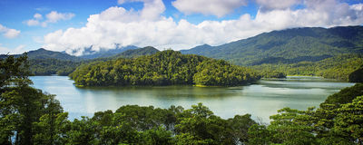 Tropikalny las deszczowy jezioro obraz stock