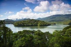 Tropikalny las deszczowy jezioro Obraz Royalty Free