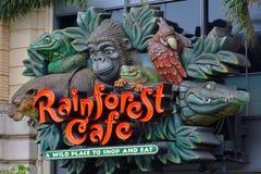 Tropikalny las deszczowy kawiarnia w San Fransisco, Kalifornia - zdjęcie royalty free