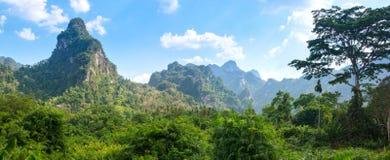 Tropikalny las deszczowy Khao Park Narodowy Sok Fotografia Royalty Free
