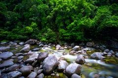 Tropikalny las deszczowy rzeka Obrazy Stock