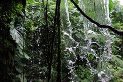Tropikalny las deszczowy siklawa Zdjęcia Stock