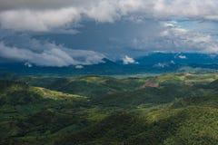 Tropikalny las deszczowy Thailand Zdjęcie Stock