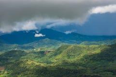 Tropikalny las deszczowy Thailand Obrazy Stock