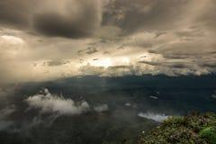 Tropikalny tropikalny las deszczowy w doiinthanon parku narodowym ranku światła krajobrazu widoku tropikalny las deszczowy, Tajla Fotografia Royalty Free