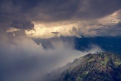 Tropikalny tropikalny las deszczowy w doiinthanon parku narodowym ranku światła krajobrazu widoku tropikalny las deszczowy, Tajla Fotografia Stock