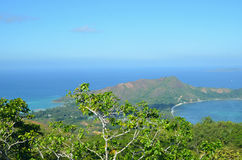 Tropikalny lasowy widok w Seyshelles wyspie Fotografia Royalty Free