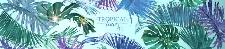 Tropikalny liść sieci sztandar ilustracji