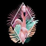 Tropikalny li?cia flaminga projekt w ?wietle - menchia, z?ota, turkus na czerni obrazy royalty free