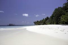 tropikalny Maldives plażowy biel Zdjęcie Royalty Free