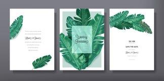Tropikalny modny powitania lub zaproszenia szablonu karciany projekt, set plakat, ulotka, broszurka, pokrywa, partyjna reklama Obraz Royalty Free