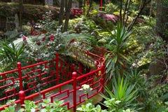 tropikalny monte ogrodowy pałac Funchal, madery wyspa, Portugalia Fotografia Royalty Free