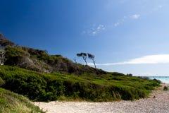 Tropikalny morze w lato czasie Zdjęcia Stock