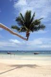 tropikalny na plaży obrazy stock