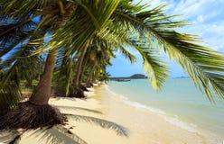 tropikalny na plaży Tajlandia, Koh Samui wyspa obraz stock