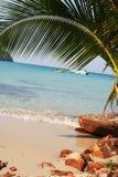 tropikalny na plaży Zdjęcia Royalty Free