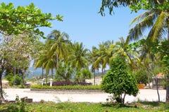 Tropikalny ogród zdjęcia royalty free