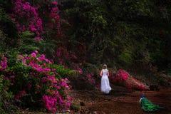 Tropikalny ogród z kwiatami i pawiem fotografia stock