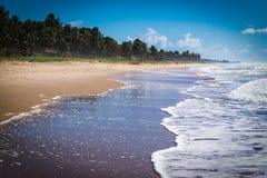 Tropikalny opróżnia plażę północ Brasil fotografia royalty free