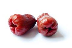 tropikalny owocowy jabłka rowsw Zdjęcie Stock