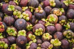 tropikalny owocowy mangostan Fotografia Stock