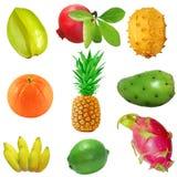 Tropikalny Owocowy Set Obrazy Stock