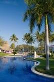 tropikalny park Obraz Stock