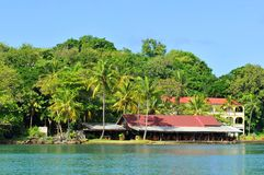 tropikalny park Obrazy Stock