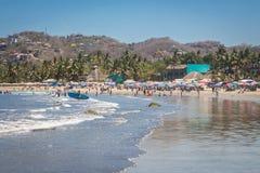 tropikalny park puerto vallarta Najlepszy plaża w Meksyk oceanu Pacific widok Obraz Royalty Free