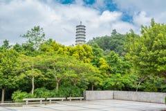 Tropikalny park z zielonymi drzewami i buddysta górujemy przeciw chmurnemu niebu Obrazy Stock