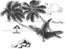 Tropikalny piaska nadmorski drzewka palmowego krajobrazu set zdjęcia royalty free