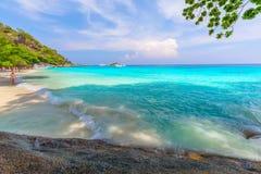Tropikalny piaskowatej plaży i bujny zielony ulistnienie na tropikalnej wyspie, Similan wyspy Tajlandia obraz royalty free