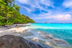 Tropikalny piaskowatej pla?y i bujny zielony ulistnienie na tropikalnej wyspie, Similan wyspy Tajlandia zdjęcie royalty free