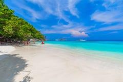 Tropikalny piaskowatej pla?y i bujny zielony ulistnienie na tropikalnej wyspie, Similan wyspy Tajlandia obraz royalty free