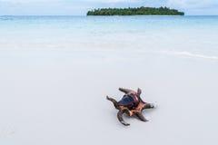 tropikalny plażowy lato Zdjęcie Royalty Free