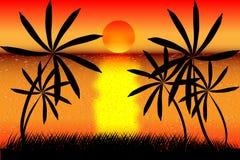 tropikalny plażowy zmierzch ilustracja wektor