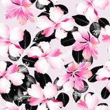 Tropikalny poślubnik kwitnie z czarnych liści bezszwowym wzorem ilustracja wektor