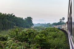 Tropikalny pociąg Fotografia Stock