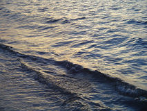 tropikalny przypływ. Zdjęcie Royalty Free