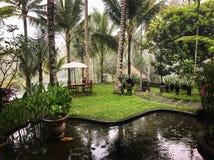 tropikalny raj Zdjęcia Royalty Free