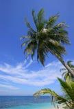 tropikalny raj. Zdjęcia Stock