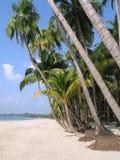 tropikalny raj. fotografia stock