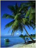 tropikalny raj. Obrazy Royalty Free