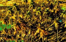 Tropikalny raj ilustracji