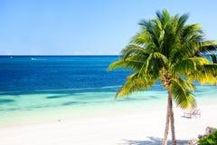 Tropikalny raj Fotografia Royalty Free