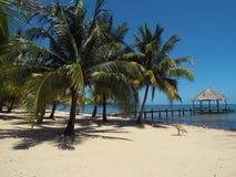 Tropikalny raj majowie plaża, Belize Zdjęcia Stock