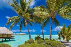 tropikalny rajskiej wyspy Zdjęcia Stock