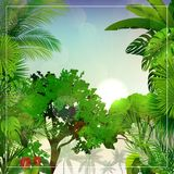 Tropikalny ranku krajobraz z drzewkami palmowymi i liśćmi royalty ilustracja